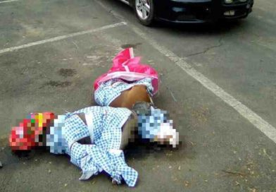Dos pitbull son asesinados en Coyoacán; temen que sea represalia por la muerte de una niña