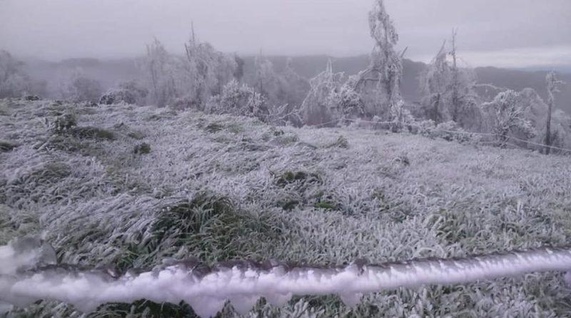 Sierra de Tlacolulan se cubre con manto gélido