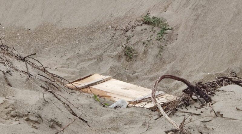 Montan FLAMANTE OPERATIVO por restos, ¡PERO DE PERRITO SIN VIDA! en el poniente de COATZACOALCOS